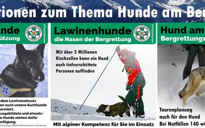 Informationen zum Thema Hunde am Berg